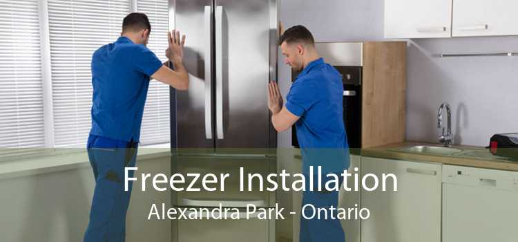 Freezer Installation Alexandra Park - Ontario