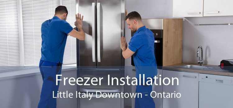 Freezer Installation Little Italy Downtown - Ontario