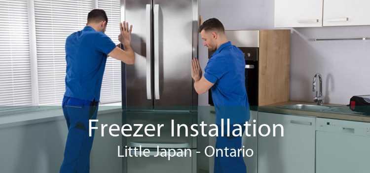 Freezer Installation Little Japan - Ontario