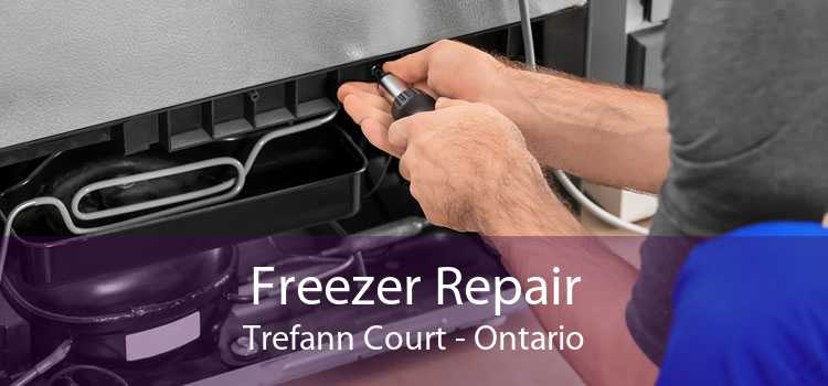 Freezer Repair Trefann Court - Ontario