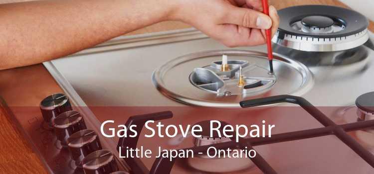 Gas Stove Repair Little Japan - Ontario
