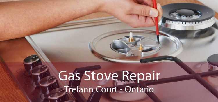 Gas Stove Repair Trefann Court - Ontario