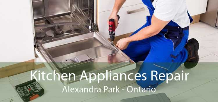 Kitchen Appliances Repair Alexandra Park - Ontario