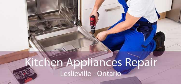 Kitchen Appliances Repair Leslieville - Ontario