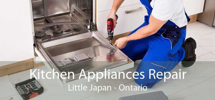 Kitchen Appliances Repair Little Japan - Ontario