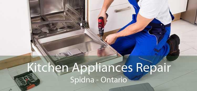 Kitchen Appliances Repair Spidna - Ontario
