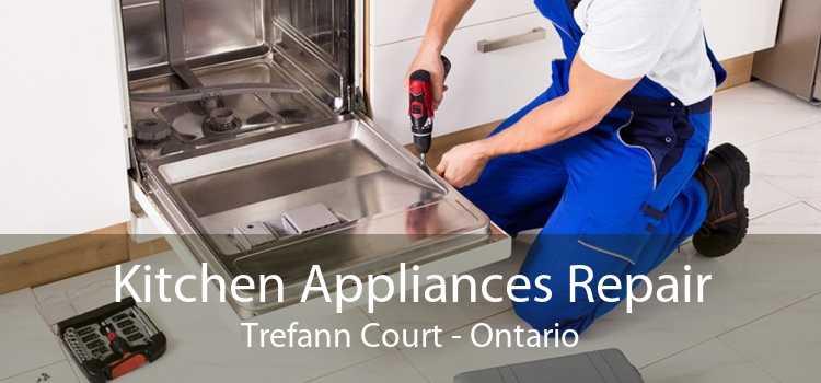 Kitchen Appliances Repair Trefann Court - Ontario
