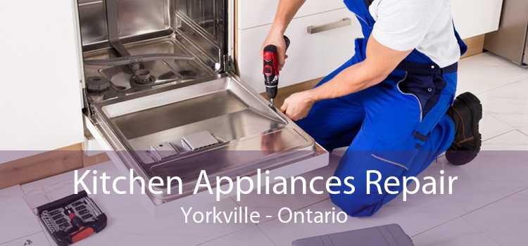 Kitchen Appliances Repair Yorkville - Ontario