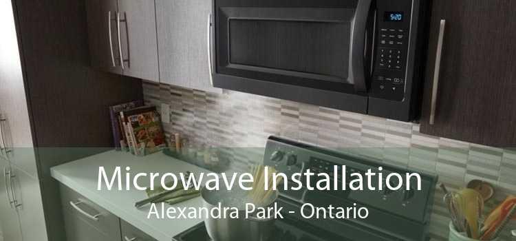 Microwave Installation Alexandra Park - Ontario