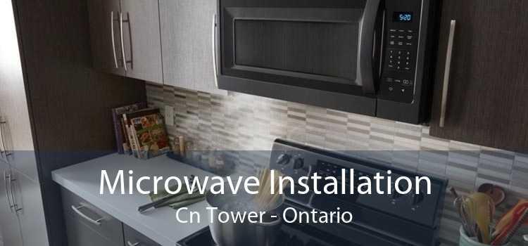 Microwave Installation Cn Tower - Ontario