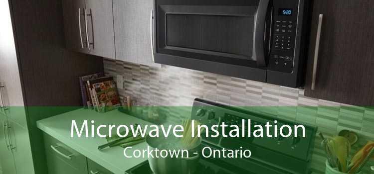 Microwave Installation Corktown - Ontario
