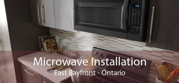 Microwave Installation East Bayfront - Ontario