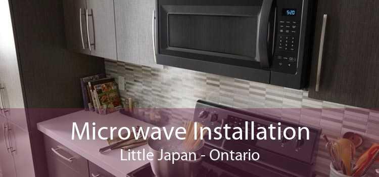 Microwave Installation Little Japan - Ontario
