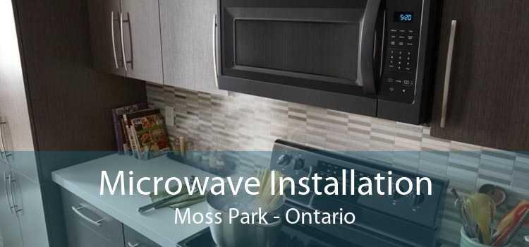 Microwave Installation Moss Park - Ontario