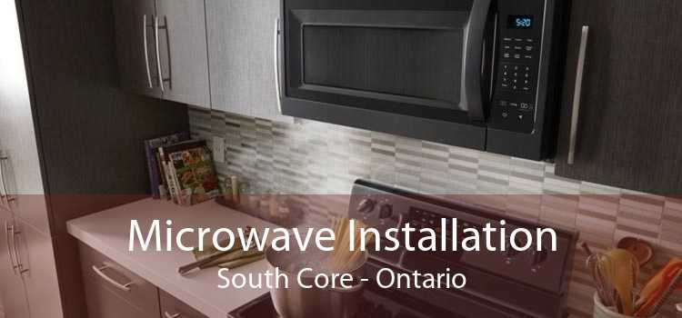 Microwave Installation South Core - Ontario