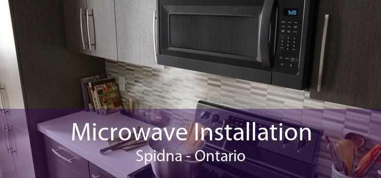 Microwave Installation Spidna - Ontario