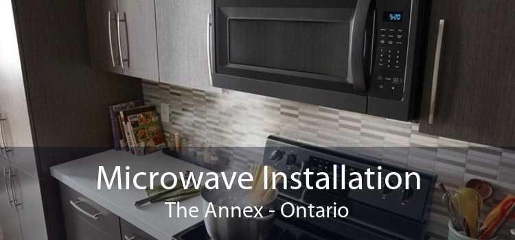 Microwave Installation The Annex - Ontario