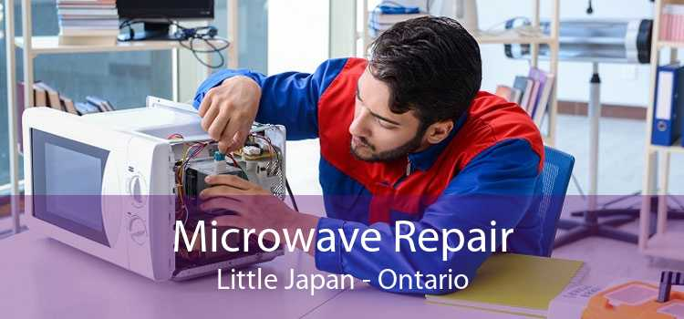 Microwave Repair Little Japan - Ontario