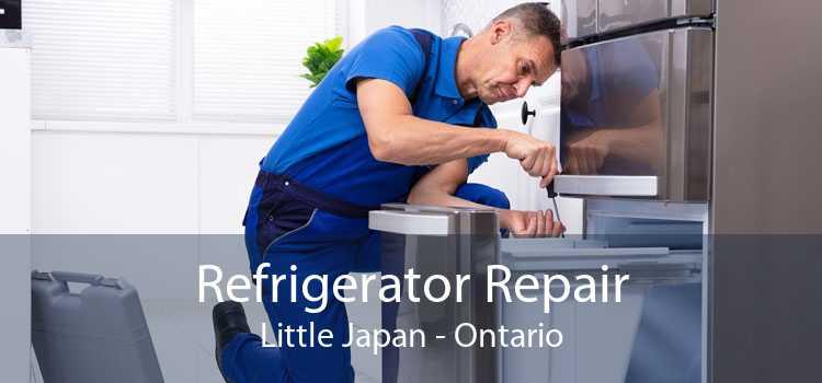 Refrigerator Repair Little Japan - Ontario