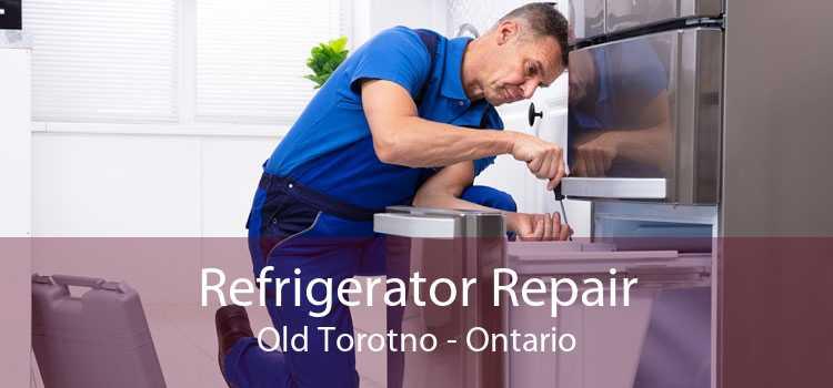 Refrigerator Repair Old Torotno - Ontario