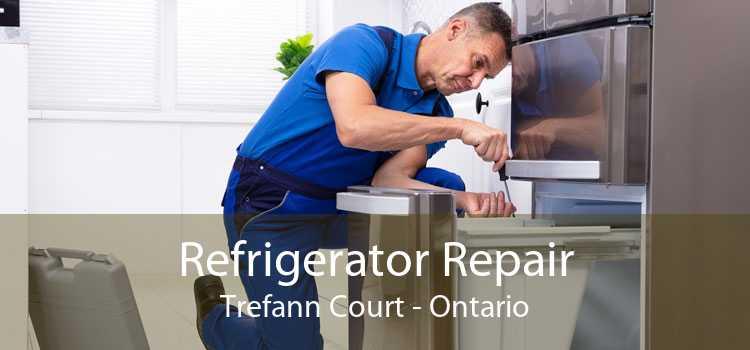 Refrigerator Repair Trefann Court - Ontario